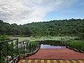 Savlem lake at Pilerne Goa.jpg