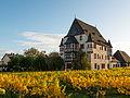 Schloss Schönborn, Geisenheim 20131027 1.jpg