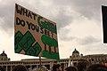 School strike for climate in Vienna, Austria - March 15 2019 - 09.jpg