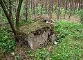 Schron Ringstand 58c ukryty w lesie - panoramio.jpg