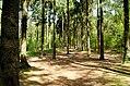 Scoutcentrum Buitenzorg Baarn - panoramio (9).jpg