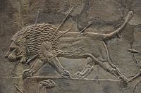 Sculpted reliefs depicting Ashurbanipal, the last great Assyrian king, hunting lions, gypsum hall relief from the North Palace of Nineveh (Irak), c. 645-635 BC, British Museum (16722131531).jpg