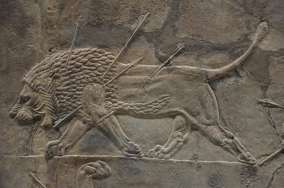 Sculpted reliefs depicting Ashurbanipal, the last great Assyrian king, hunting lions, gypsum hall relief from the North Palace of Nineveh (Irak), c. 645-635 BC, British Museum (16722131531)