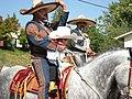 Seattle - Fiestas Patrias Parade 2008 - horses 07.jpg