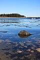 Seawall Coast, Acadia National Park.jpg