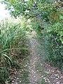 Secret Trail (10997936296).jpg