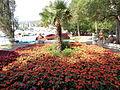 Selce (Croatia) - park.jpg