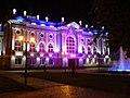Senaki theatre night.jpg