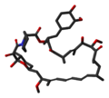 Sirolimus-from-1C9H-3D-sticks.png