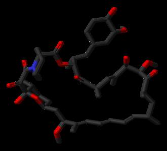 Sirolimus - Image: Sirolimus from 1C9H 3D sticks