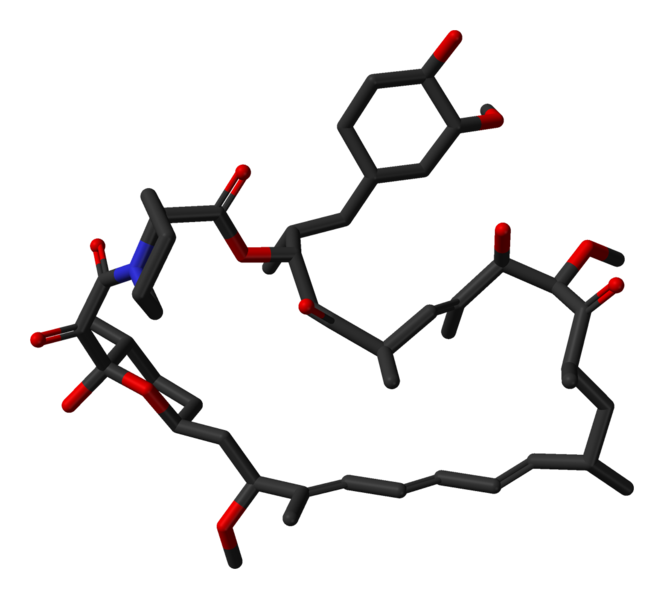 File:Sirolimus-from-1C9H-3D-sticks.png