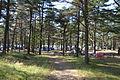 Sjøsanden Camping.JPG