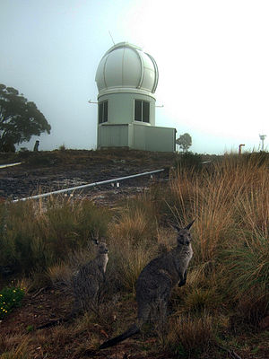 SkyMapper - Siding Spring is within Warrumbungles National Park, and wildlife are common around the telescopes.