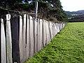 Slate Fence - geograph.org.uk - 390027.jpg
