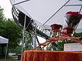 Slinky Springs to Fame - Eröffnung100077.jpg