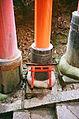 Small torii (5074961316).jpg