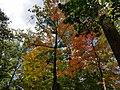 Smith Nature Park and Slyh Run (29931427974).jpg