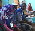 Southern Sudan Referendum observers.jpg