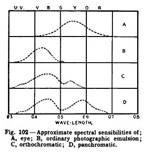 Spectral sensitivity - Image: Spectral sensibilities