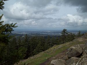 Spencer Butte - View of the southern Willamette Valley from the summit of Spencer Butte.