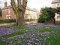 Spring at St Wilfrid's - geograph.org.uk - 362904.jpg