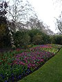 Spring flower beds to the south of St. James' Park lake - geograph.org.uk - 763397.jpg