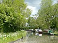 Staffordshire and Worcestershire Canal near Cross Green, Staffordshire - geograph.org.uk - 1361232.jpg