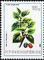 Stamp of Albania - 1984 - Colnect 364193 - Black Mulberry Morus nigra.jpeg