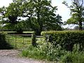 Stapeley farmland.jpg