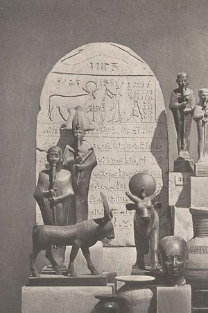 Shoshenq V - In the background, Shoshenq V standing in front of an Apis bull on a stela of his Year 37.