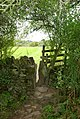 Stile on the track to Calver - geograph.org.uk - 557482.jpg