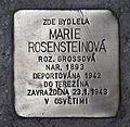 Stolperstein für Marie Rosensteinova.JPG