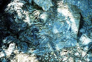 Abiogenesis - Precambrian stromatolites in the Siyeh Formation, Glacier National Park. In 2002, a paper in the scientific journal Nature suggested that these 3.5 Ga (billion years) old geological formations contain fossilized cyanobacteria microbes. This suggests they are evidence of one of the earliest life forms on Earth.