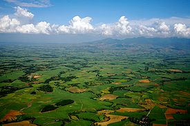 Sugarcane plantations Bacolod Philippines.jpg