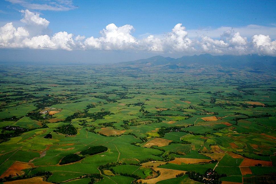 Sugarcane plantations Bacolod Philippines