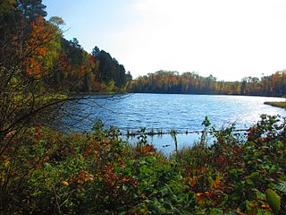 Suomi, Minnesota Unincorporated community in Minnesota, United States