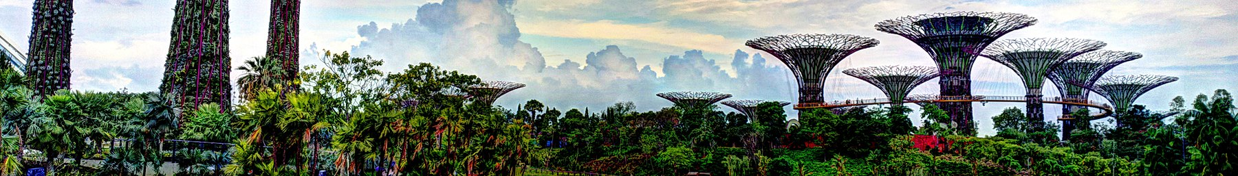 Supertree Grove, Gardens by the Bay, Singapore - 20120704 (banner).jpg