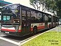 TIB1106E - 911 (2).JPG