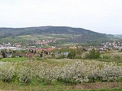 Talblick auf Witzenhausen zur Kirschblüte ds wv 04 2010.jpg