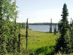 Tanaina lake.jpg