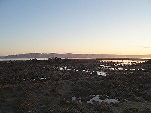 Meola Reef - Te Tokaroa Reef, looking north