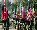 Telemark battalion flag guard front.jpg
