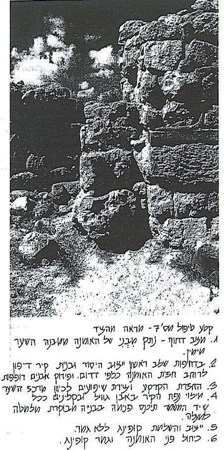 Tell Megiddo 2006 Preservation plan -5
