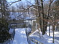 Tew's Falls view from Bruce Trail in Winter1.JPG