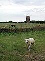"The ""Old Windmill"" near Aldbrough Road, Garton - geograph.org.uk - 206965.jpg"