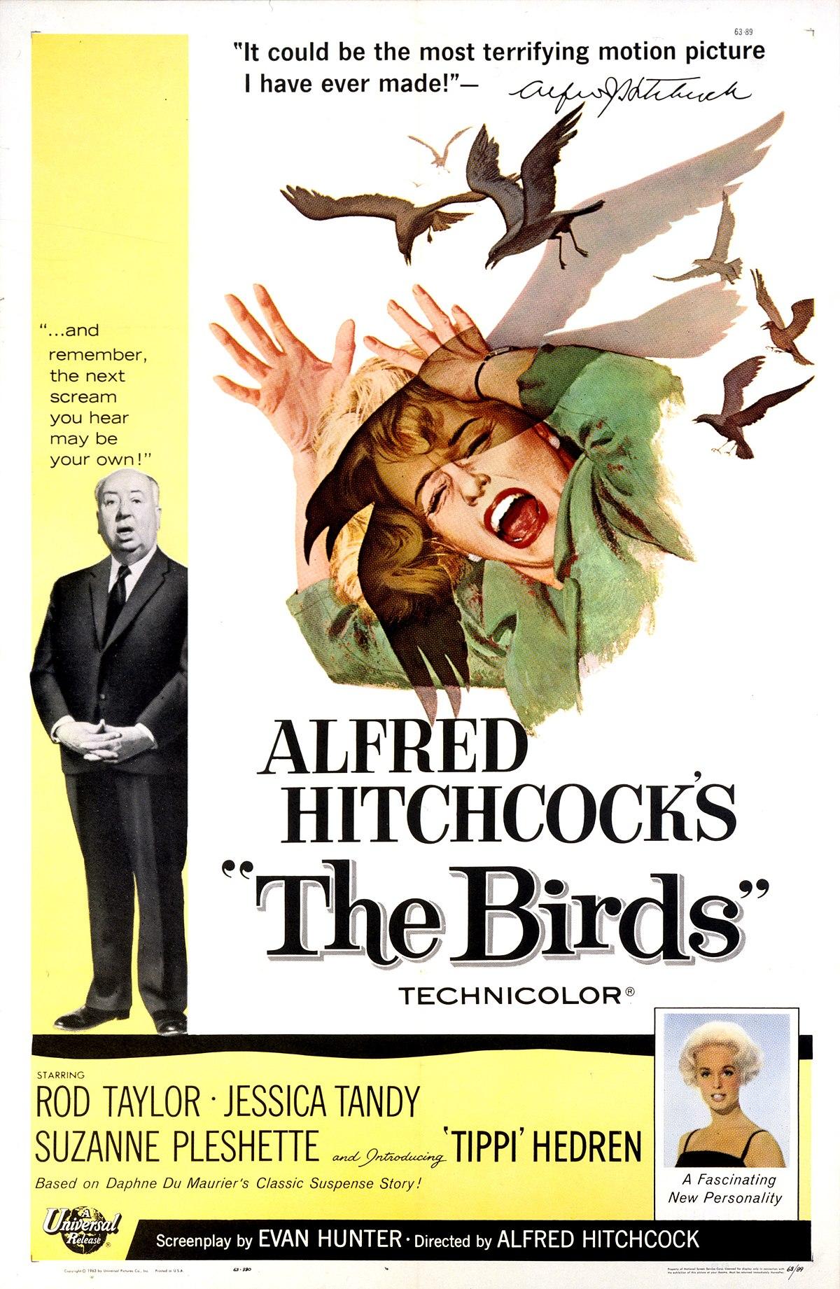 The Birds Film Wikipedia