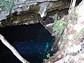 The Pit - Profundo - Cenote (4317117052).jpg