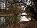 The River Test near Whitchurch, Hampshire, UK - geograph.org.uk - 1171380.jpg