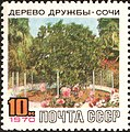 The Soviet Union 1970 CPA 3868 stamp (Friendship Tree, Sochi with label).jpg