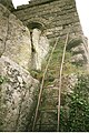 The ladder to the Hermitage. - geograph.org.uk - 956902.jpg